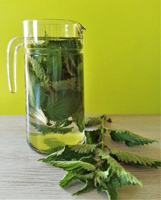 L'ortie, cette plante reminéralisante exceptionnelle..